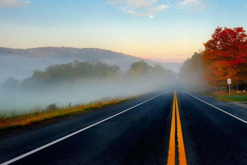 magla cesta